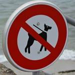 Zakaz wprowadzania psów jest nielegalny